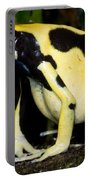 Dyeing Poison Frog Portable Battery Charger