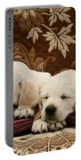 Goldidor Retriever Puppies Portable Battery Charger