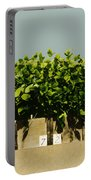 Photoperiodicity In Soybean Plants Portable Battery Charger by Science Source