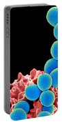 Methicillin-resistant Staphylococcus Portable Battery Charger by Science Source