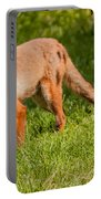 A British Red Fox Portable Battery Charger
