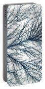 Electrical Discharge Lichtenberg Figure Portable Battery Charger by Ted Kinsman