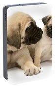 Pug And English Mastiff Puppies Portable Battery Charger