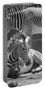 Zebras In Black And White Portable Battery Charger