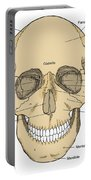 Illustration Of Anterior Skull Portable Battery Charger by Science Source