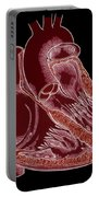 Illustration Of Heart Anatomy Portable Battery Charger