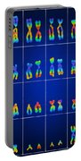 Male Karyotype Portable Battery Charger