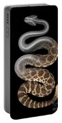 Southern Pacific Rattlesnake X-ray Portable Battery Charger