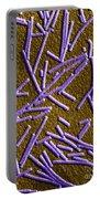 Tobacco Mosaic Virus, Tem Portable Battery Charger