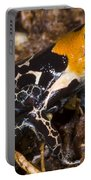 Crowned Poison Frog Portable Battery Charger