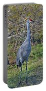 9- Sandhill Crane Portable Battery Charger