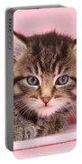 Tabby Kitten Portable Battery Charger