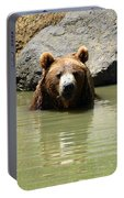 A Bear's Hot Tub Portable Battery Charger