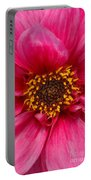 A Big Pink Flower Portable Battery Charger