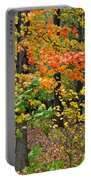 A Blustery Autumn Day Portable Battery Charger