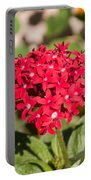 A Bunch Of Small Red Flowers Portable Battery Charger