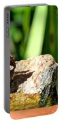 A Butterfly Enjoys A Drink Portable Battery Charger
