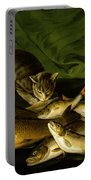 A Cat With Trout Perch And Carp On A Ledge Portable Battery Charger by Stephen Elmer