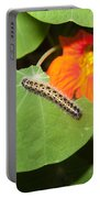 A Caterpillar Eating The Leaves Of A Plant With A Beautiful Orange Flower Portable Battery Charger