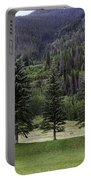 A Day At The Park In Vail Portable Battery Charger
