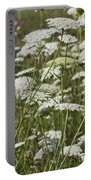A Field Of Queen Annes Lace Portable Battery Charger