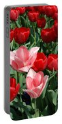 A Field Of Tulips Series 3 Portable Battery Charger