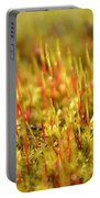 A Forest Of Moss II Portable Battery Charger