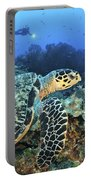 A Hawksbill Turtle Swims Portable Battery Charger