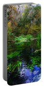 A Hint Of Fall At Ichnetucknee Springs Portable Battery Charger