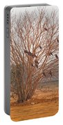 A Leafless Tree That Is Home To A Large Number Of Big Birds In The Middle Of A Ground Portable Battery Charger