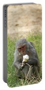 A Monkey Enjoying An Ice Cream Cone Inside Delhi Zoo Portable Battery Charger