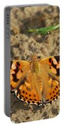 A Painted Lady Looking For Sex 8619 3369 Portable Battery Charger