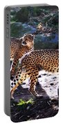 A Pair Of Cheetah's Portable Battery Charger