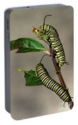 A Pair Of Monarch Caterpillars Portable Battery Charger