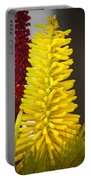 A Pair Of Yellow And Red Portable Battery Charger