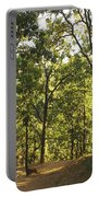 A Path Through A Sparse Forest And Trees Portable Battery Charger