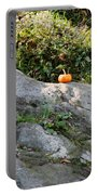 A Pumpkin In Central Park Portable Battery Charger