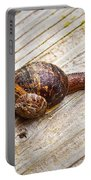 A Snail Sliding Across A Wooden Surface Portable Battery Charger by Tom Gowanlock