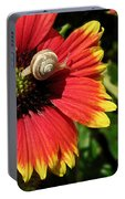 A Snail's Pace Portable Battery Charger
