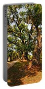 A Southern Stroll Portable Battery Charger by Steve Harrington
