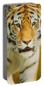 A Tiger Portable Battery Charger