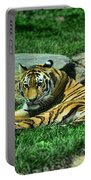 A Tiger's Gaze Portable Battery Charger by Paul Ward