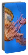 A Trio Of Jellyfish Portable Battery Charger by Kristin Elmquist