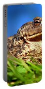 A Worm's Eye View Portable Battery Charger