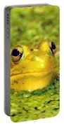 A Yellow Bullfrog Portable Battery Charger