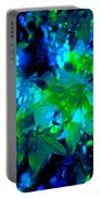 Abstract 100 Portable Battery Charger