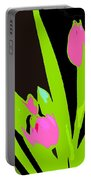 Abstract 185 Portable Battery Charger