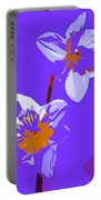 Abstract 193 Portable Battery Charger