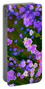 Abstract 207 Portable Battery Charger