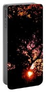 Abstract 223 Portable Battery Charger